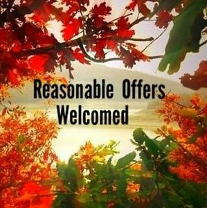 Other - Reasonable Offers L💗VED